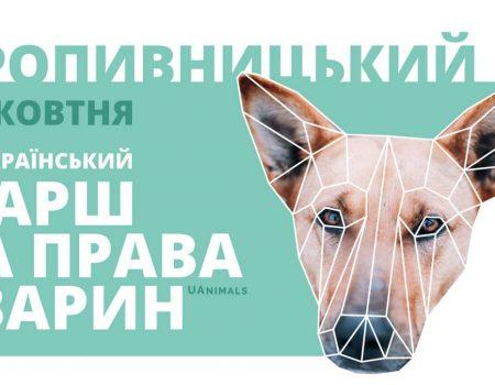 У Кропивницькому відбудеться марш за права тварин