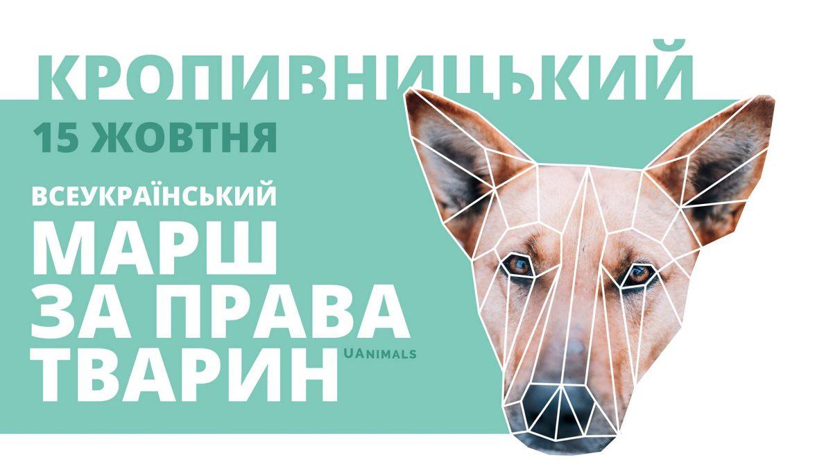 Без Купюр У Кропивницькому відбудеться марш за права тварин Життя  тварини Кропивницький