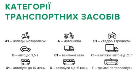 У Кропивницькому з'явилося більше 5500 нових водіїв: покрокова інструкція з отримання посвідчення