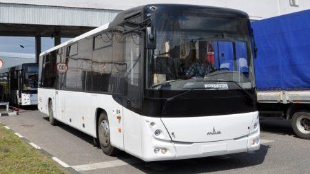 Графіки руху нових великомісних автобусів у Кропивницькому, що обслуговуватимуть Стару Балашівку та селище Нове