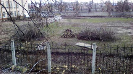 У центрі Кропивницького триває «дровозаготівля», активісти вийшли на інформаційний пікет. ФОТО