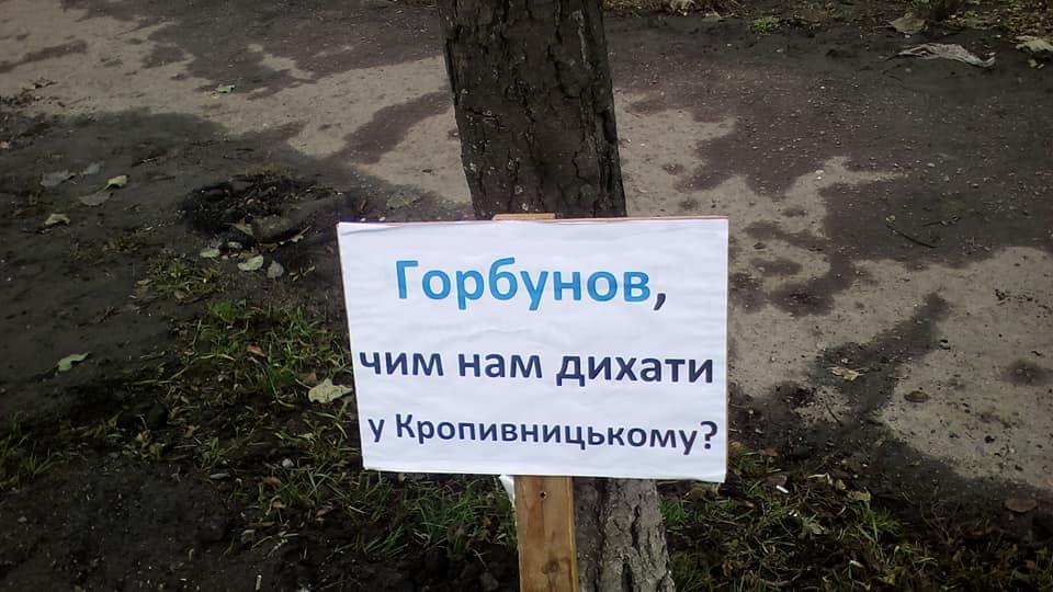 Без Купюр У центрі Кропивницького триває «дровозаготівля», активісти вийшли на інформаційний пікет. ФОТО Події  озеленення Кропивницький