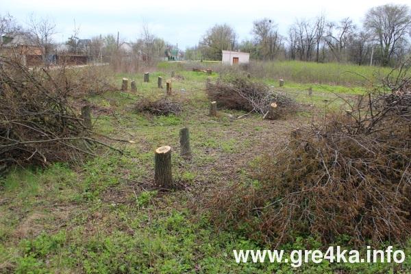 У Кропивницькому низку ділянок у рекреаційній зоні планують визнати призначеними під забудову 1