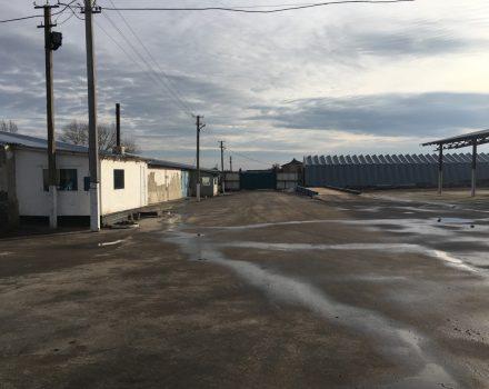 На Кіровоградщині неповнолітній вкрав з агрофірми плазмовий телевізор. ФОТО