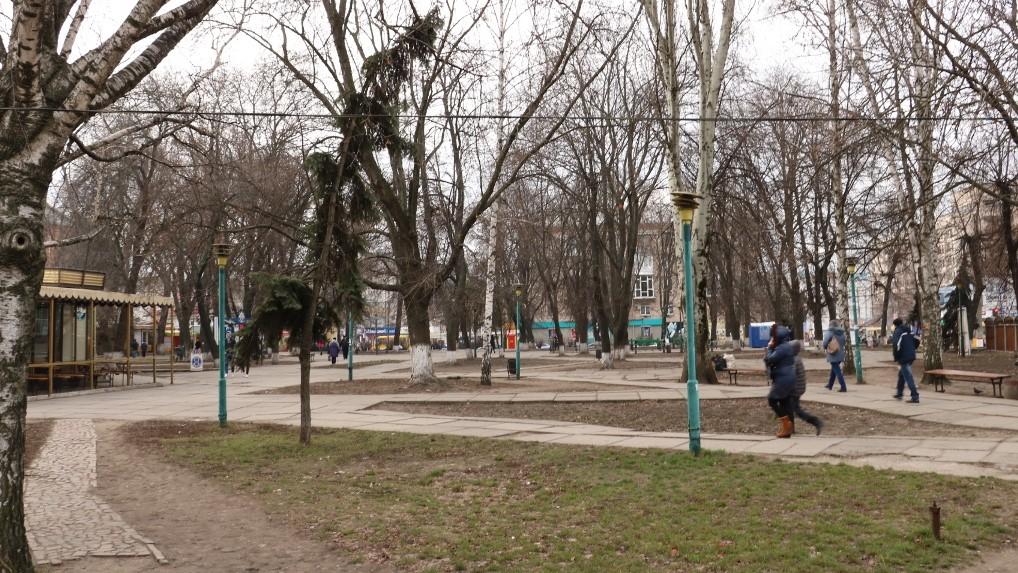 Без Купюр У міськраді Кропивницького знову заговорили про знесення дерев у Центральному сквері Події  Центральний сквер Кропивницький знесення дерев