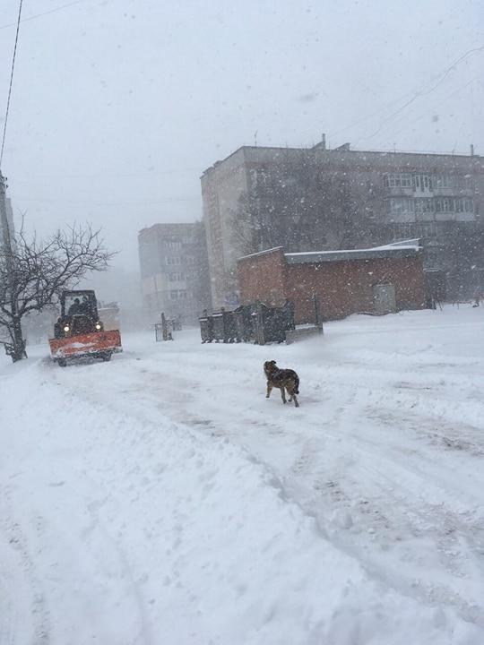 Де та як розчищають дороги в Кропивницькому. ФОТО 9