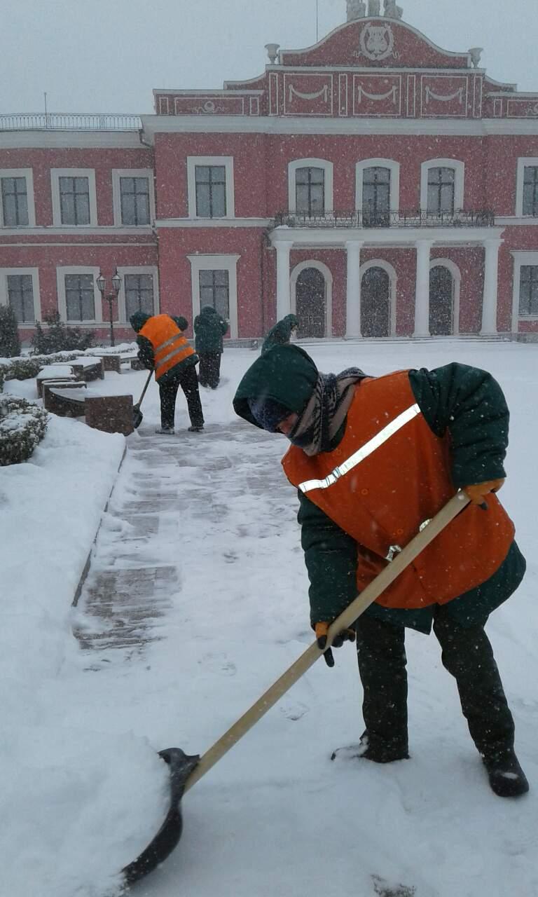 Де та як розчищають дороги в Кропивницькому. ФОТО 3