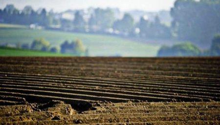 На Кіровоградщині прокуратура повернула державі незаконно набуті  у  володіння землі