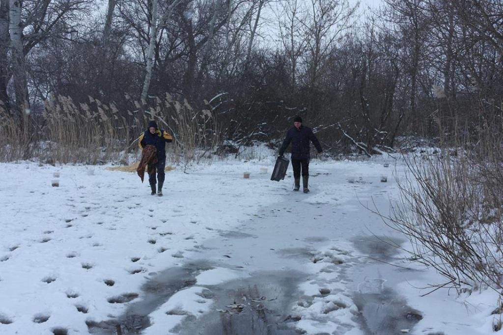 Без Купюр У Новій Празі люди допомагають лелекам пережити холодну весну. ФОТО Життя  Кіровоградщина