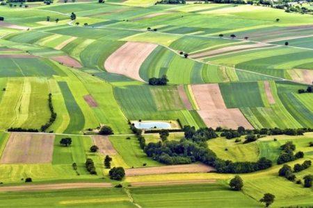 На Кіровоградщині з молотка піде більше 13,5 тисяч гектарів державних земель