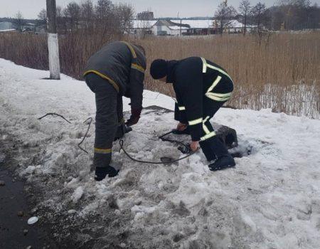 В Олександрівці рятувальники витягнули з каналізаційного колодязя собаку. ФОТО