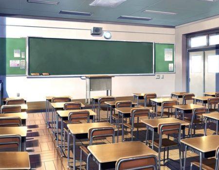 Сімейний підряд: у кропивницькій школі №18 працевлаштовували родичів. ДОКУМЕНТ