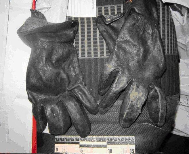 Без Купюр На Кіровоградщині затримали підозрюваних у пограбуванні помешкань фермерів. ФОТО Кримінал  пограбування Кіровоградщина