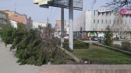 Повалені борди і дерева: наслідки негоди у Кропивницькому. ФОТО
