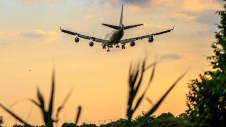 YouControl: серед українських авіакомпаній 93% перевезень припадає на 5 лідерів