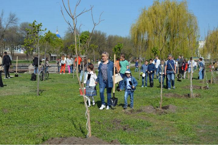 Без Купюр До Дня довкілля у Кропивницькому на Набережній висадили більше 140 дерев Життя  Кропивницький довкілля