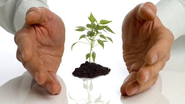 Фермерські господарства Кіровоградщини отримують державну компенсацію у ПриватБанку 1