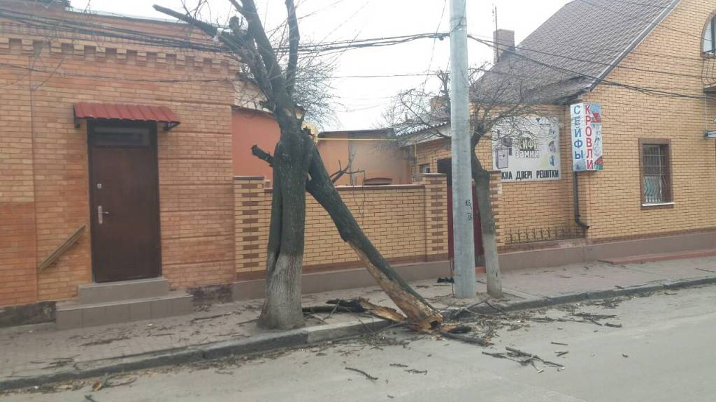 Без Купюр Повалені борди і дерева: наслідки негоди у Кропивницькому. ФОТО Події  негода Кропивницький впали борди
