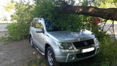 У Компаніївці деревина упала на автомобіль. ФОТО