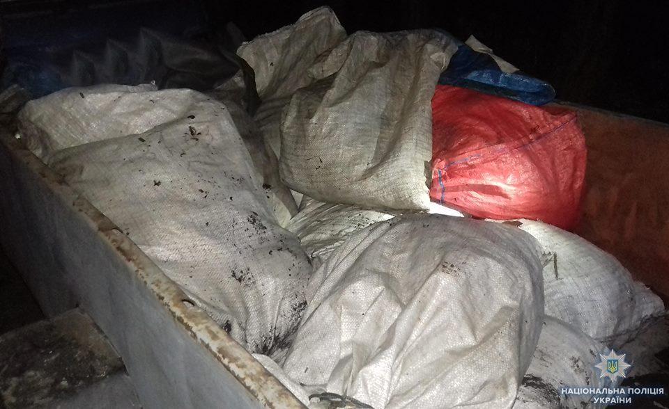 Без Купюр На Кіровоградщині вилучили понад 700 кілограмів незаконно виловленої риби. ФОТО Життя  поліція незаконно виловлена риба Кіровоградщина вилучення
