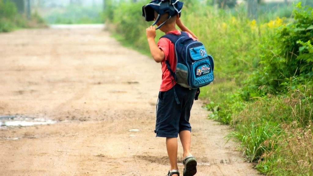 Для школярів підготували мовні табори, школи волонтерства, парамедиків та ІТ-технологій - 1 - Життя - Без Купюр