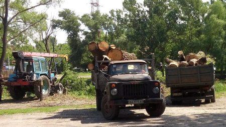 У Кропивницькому чиновники переконували, чому треба зносити дерева в районі Інгулу