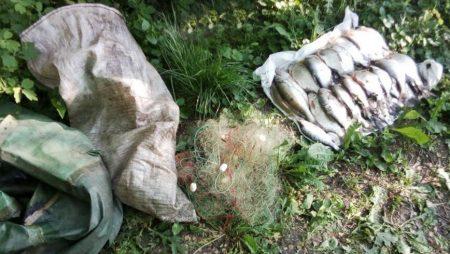 На Кіровоградщині рибоохорона вилучила 92 кілограми браконьєрської риби