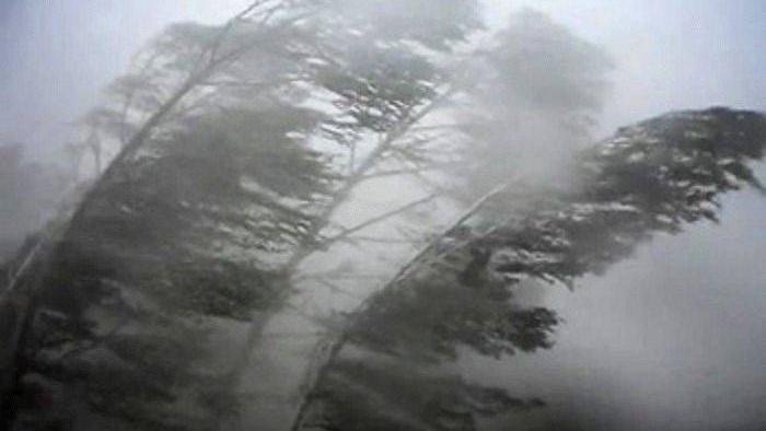 Без Купюр Сьогодні в Кропивницькому та області очікуються грози та шквали Життя  штормове попередження Кропивницький Кіровоградщина ДСНС