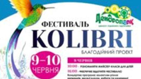"""У Денропарку Кропивницького відбудеться благодійний фестиваль """"Kolibri"""""""