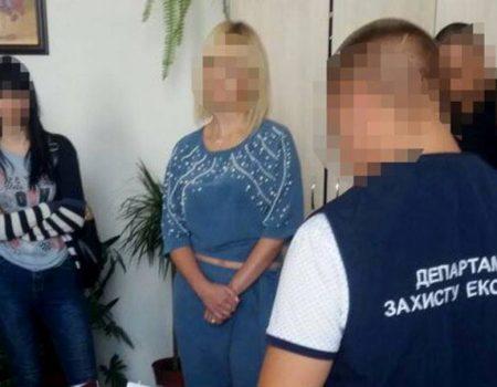 У Кропивницькому за підозрою в отриманні хабара затримали чиновницю, відповідальну за тендери