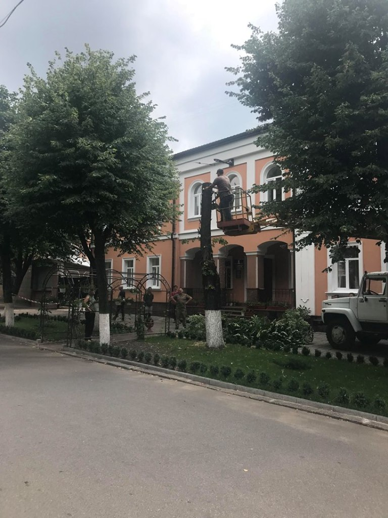 Без Купюр У Кропивницькому біля управління юстиції зносять дерево Події  Кропивницький знищення дерев