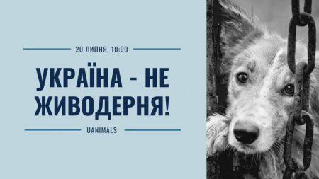 """Кропивничан запрошують підтримати акцію """"Україна – не живодерня"""""""