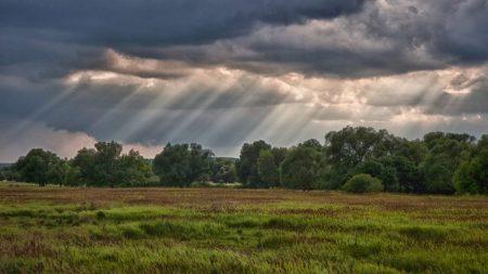 На Кіровоградщині сьогодні очікуються сильні дощі