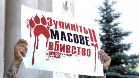 У Кропивницькому пропонують винагороду за викриття догхантерів