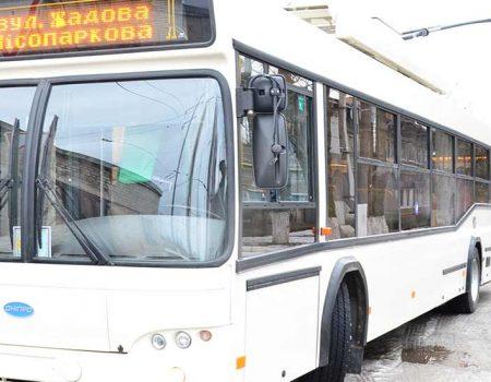 З'явилася петиція про забезпечення тролейбусного сполучення Лелеківки з центром Кропивницького