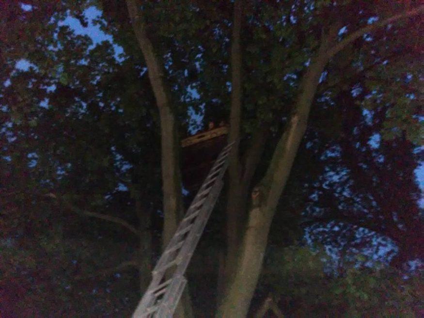 Без Купюр Рятувальники вивільнили пасажирів повітряної кулі, що зачепилася за дерево. ФОТО, ВІДЕО Події  повітряна куля Кіровоградщина Знам'янка