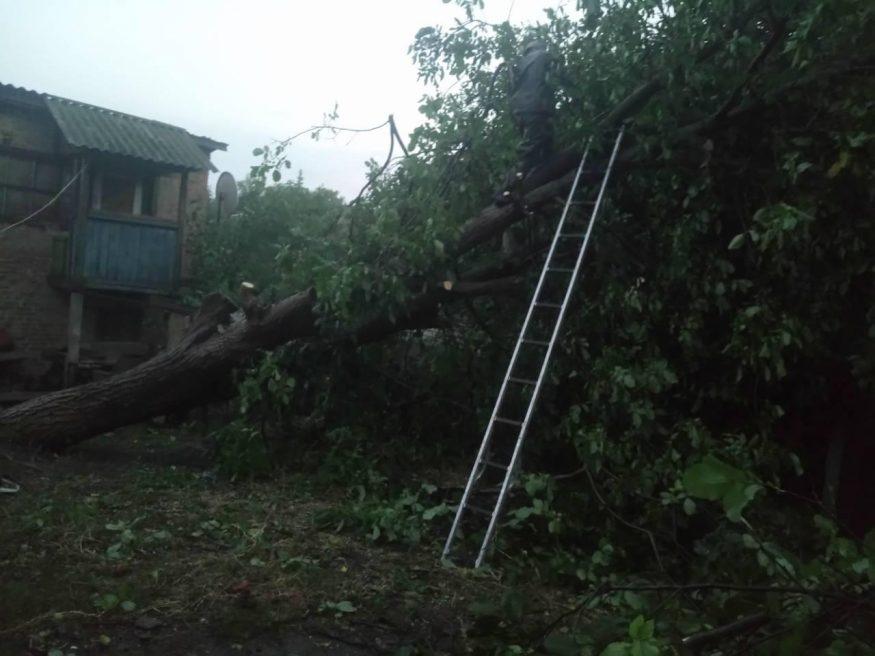 В Олександрiвцi пiд час негоди «не встояли» дерева й паркани. ФОТО - 4 - Життя - Без Купюр