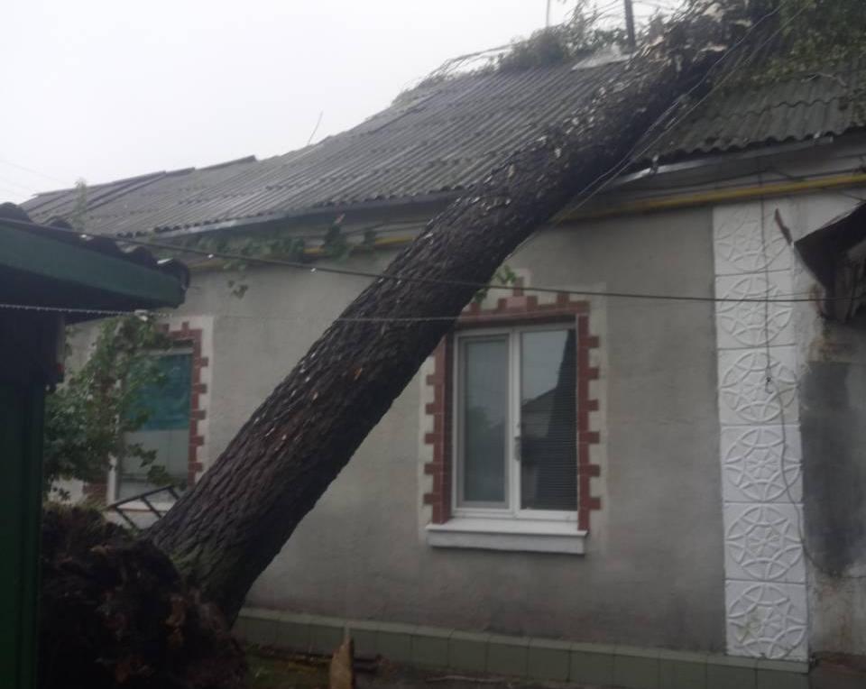 В Олександрiвцi пiд час негоди «не встояли» дерева й паркани. ФОТО - 2 - Життя - Без Купюр