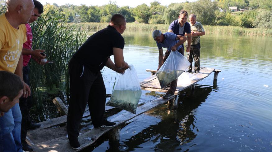 У Новоархангельському районі річку Синюху зарибили осетровими. ФОТО. ВІДЕО 5