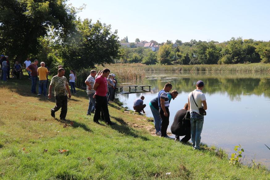 У Новоархангельському районі річку Синюху зарибили осетровими. ФОТО. ВІДЕО 9
