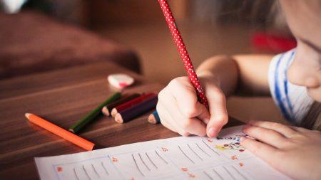 У Кропивницькому батьки 11-річної дівчинки просять допомогти врятувати дитину