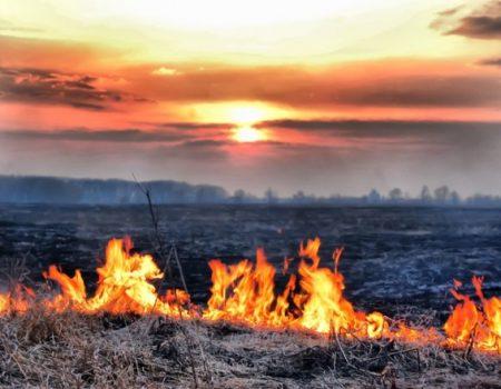 Метеорологи Кіровоградщини попереджають про заморозки та пожежну небезпеку на цих вихідних