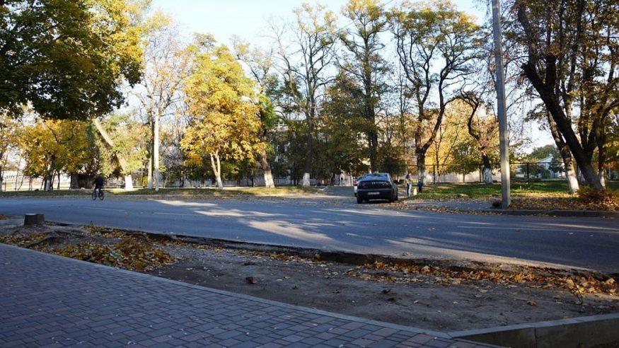 Без Купюр | Події | Клен навпроти 26-ї школи у Кропивницькому таки спиляли. ФОТО 1