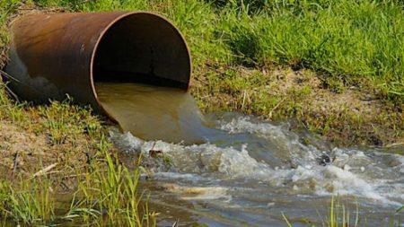 Підприємство, що зароблятиме на дегазації сміттєзвалища, запідозрили в забрудненні довкілля