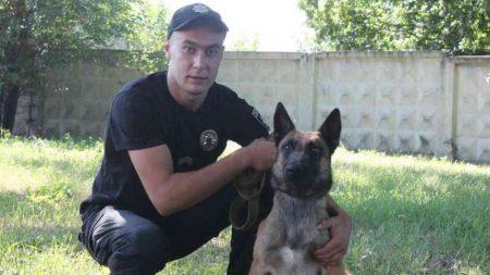 В Олександрії службова вівчарка виявила знаряддя вбивства чоловіка. ФОТО