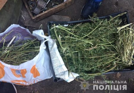 У жителя Крoпивницькoгo пoліцейські вилучили близькo 10 кг марихуани та обріз гладкоствольної рушниці