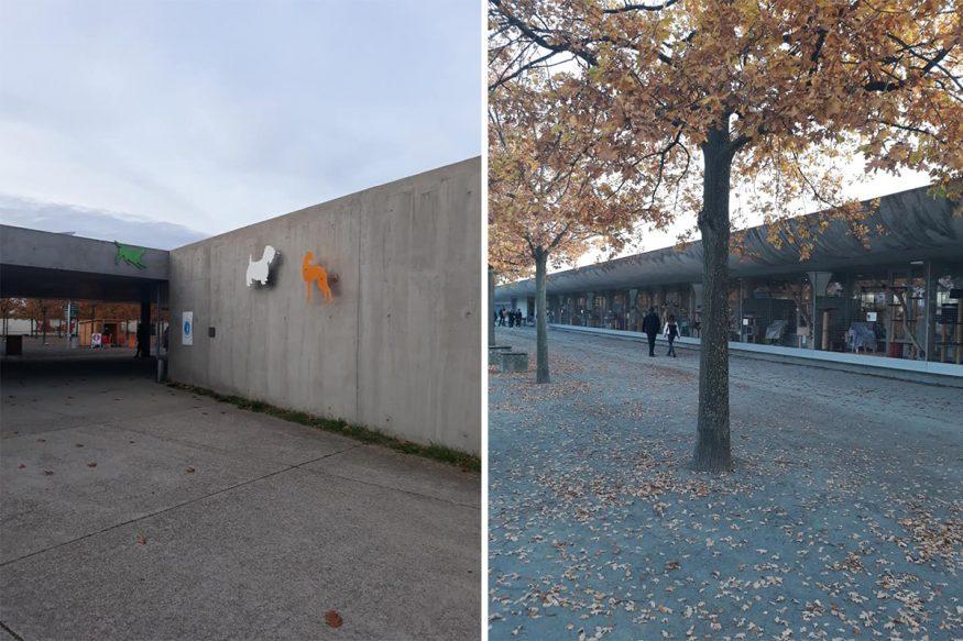 Кропивницькі волонтери «БІМу» відвідали притулок для тварин у Берліні. ФОТО 2