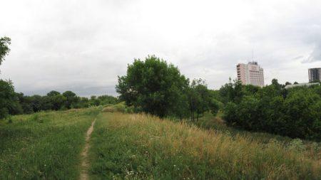 """Голова ГО """"Озеленення Кропивницький"""" прокоментувала ідею розчистити територію в районі фортечних валів"""
