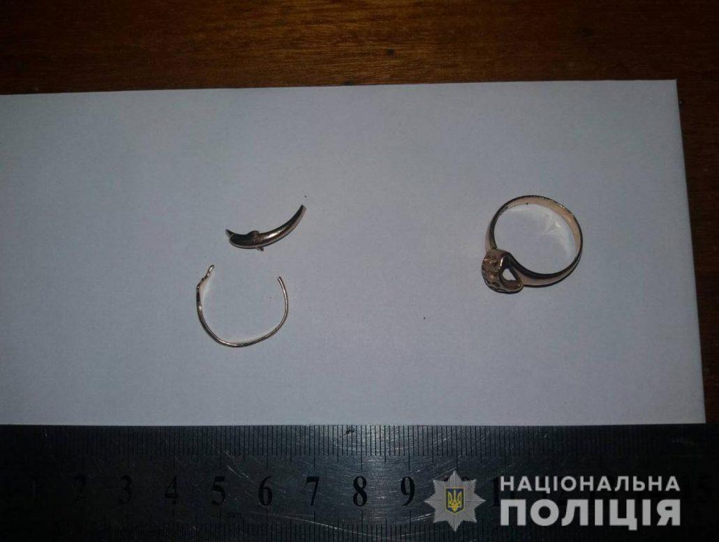 Без Купюр Кропивницький: поліцейські затримали чоловіка, який вбив та обікрав жінку. ФОТО Кримінал  поліція Кропивницький вбивство