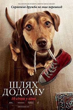 У кінотеатрі в Кропивницькому показ нового драматичного фільму про собаку - 1 - Культура - Без Купюр